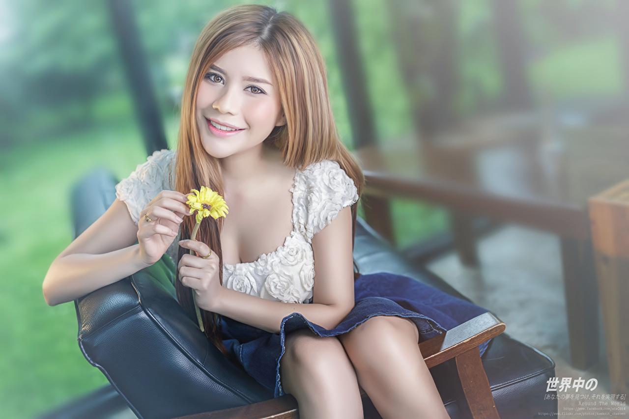 Фото шатенки улыбается Размытый фон девушка Руки Взгляд Шатенка Улыбка боке Девушки молодая женщина молодые женщины рука смотрит смотрят