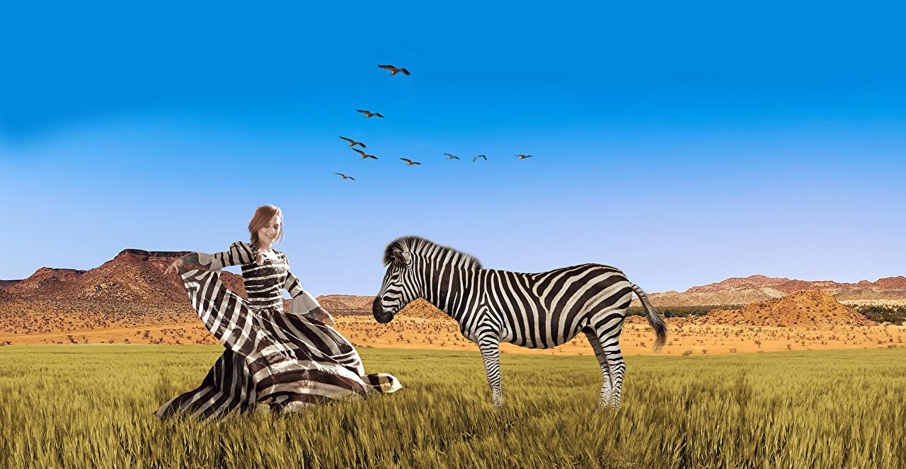 Обои для рабочего стола Зебры Африка Природа молодые женщины Небо траве Животные Платье девушка Девушки молодая женщина Трава животное платья