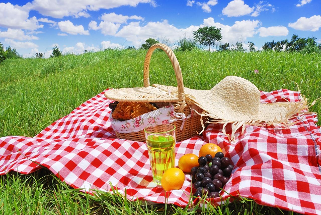 Фотография пикнике Шляпа Стакан корзины Виноград Пища траве Пикник шляпе шляпы стакане Корзина стакана Корзинка Еда Трава Продукты питания