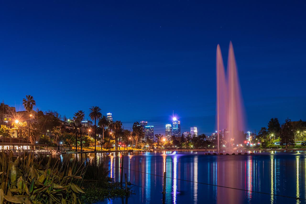Картинка Лучи света калифорнии Лос-Анджелес америка Фонтаны Echo Park Lake Природа парк Озеро пальма в ночи Города Калифорния США штаты Парки пальм Пальмы Ночь ночью Ночные город
