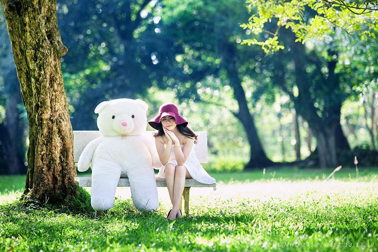 Картинки брюнетки шляпе Девушки Ствол дерева Плюшевый мишка Трава Скамейка игрушка Брюнетка брюнеток шляпы Шляпа девушка молодая женщина молодые женщины Мишки траве Скамья Игрушки