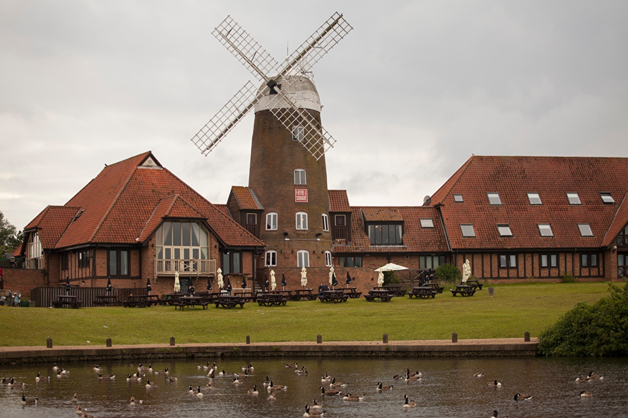 Фотографии утка Англия мельницы Milton Keynes, Buckinghamshire County Кафе Пруд Города Утки Мельница ветряная мельница город