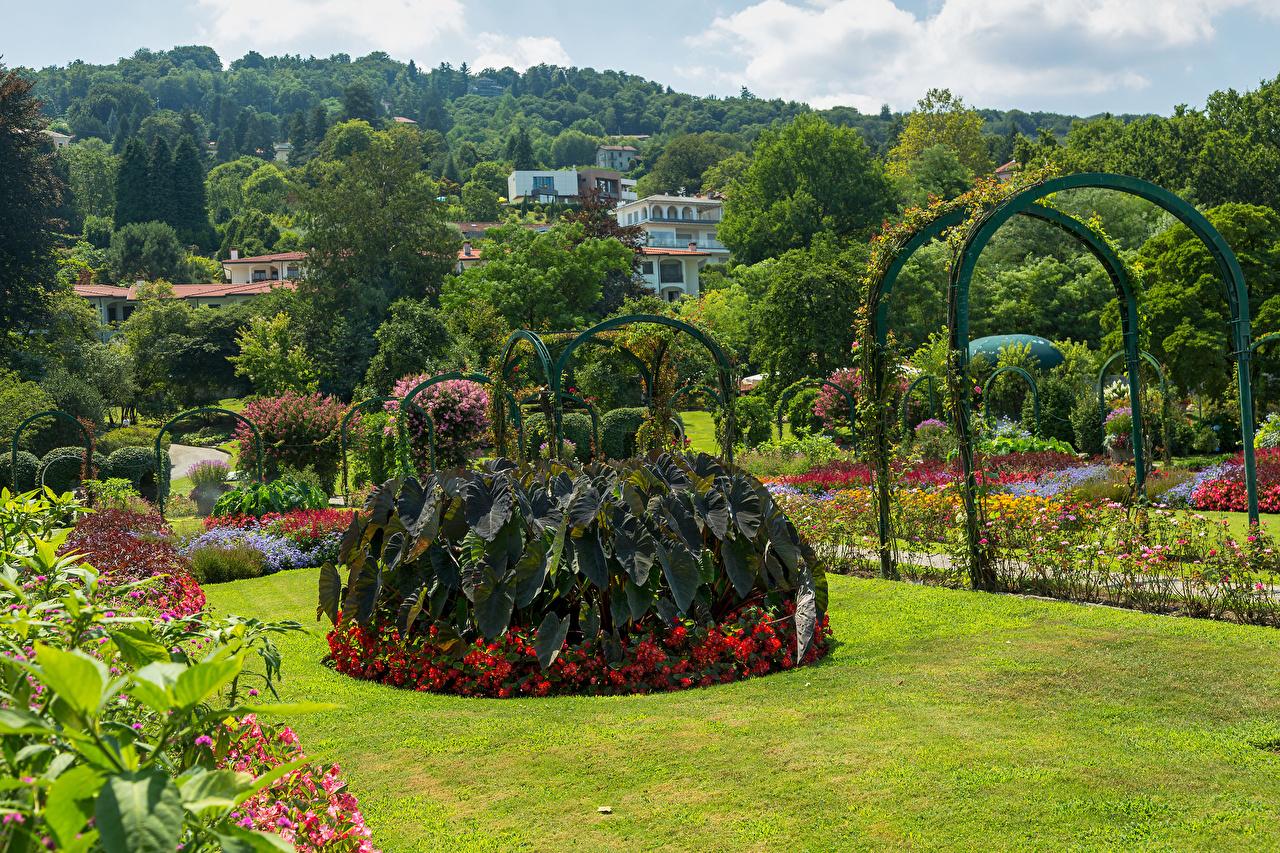 Картинки Италия Villa Pallavicino Stresa Природа Сады газоне кустов дизайна Газон Кусты Дизайн