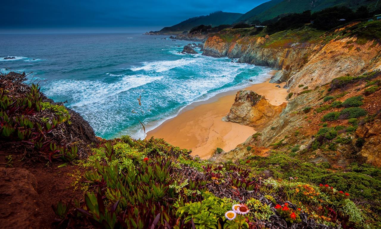 Картинка калифорнии америка Big Sur, Julia Pfeiffer Burns State Park Утес Океан Природа Побережье Калифорния США штаты Скала скале скалы берег