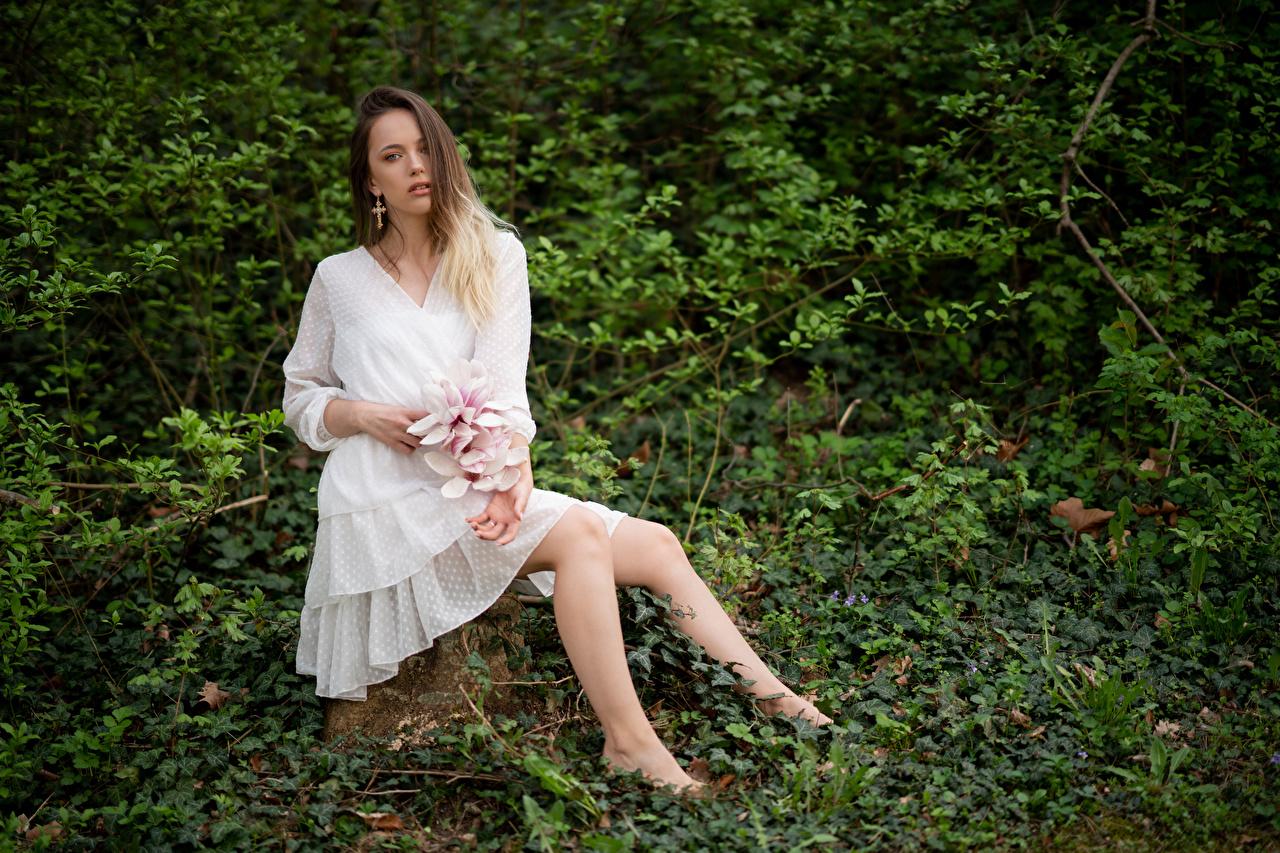 Картинки Lidia Девушки Сидит Взгляд платья девушка молодая женщина молодые женщины сидя сидящие смотрит смотрят Платье