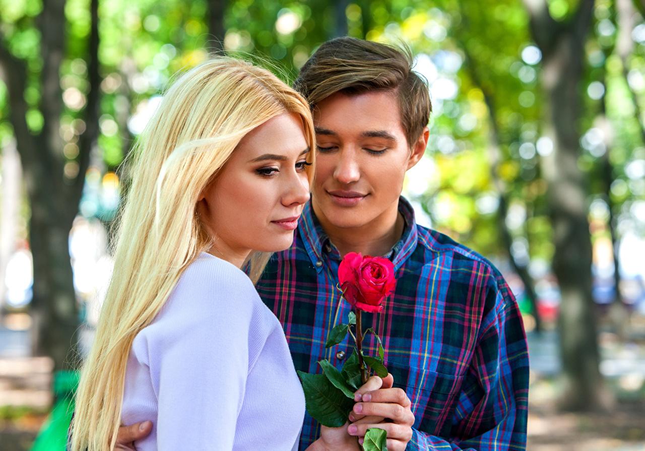 Фото Блондинка Мужчины 2 Розы Любовь Девушки Двое вдвоем