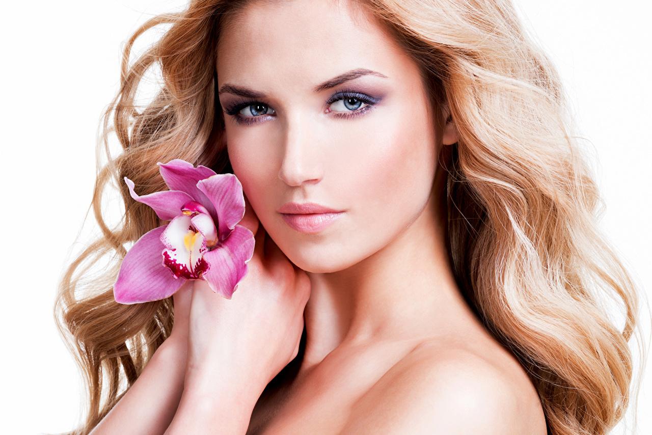 Картинки Блондинка Макияж Лицо Девушки Орхидеи Взгляд Белый фон мейкап смотрит