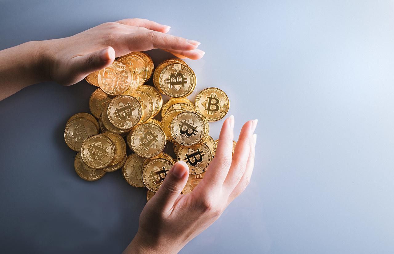 Обои для рабочего стола Bitcoin Монеты золотые рука Деньги Много Серый фон Биткоин Золотой золотая золотых Руки сером фоне