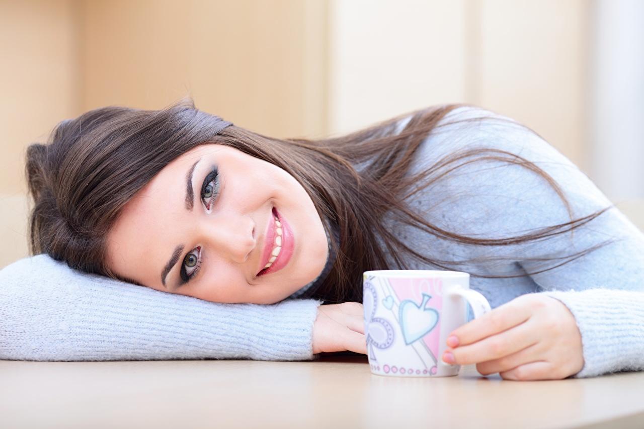 Фотографии Макияж улыбается Милые Девушки Свитер кружки Взгляд Улыбка мейкап косметика на лице милая милый Миленькие девушка молодая женщина молодые женщины свитере свитера Кружка кружке смотрит смотрят