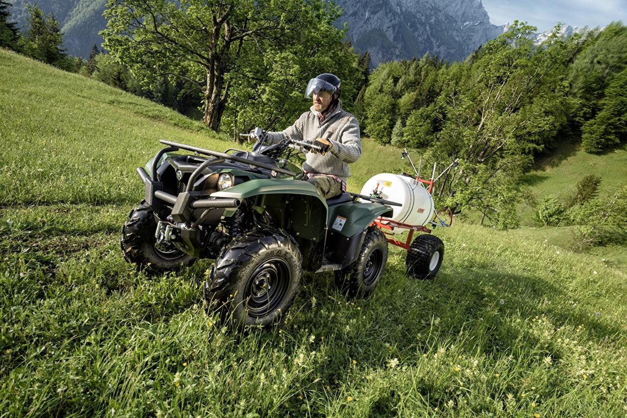 Фотографии Квадроцикл 2015-17 Yamaha Kodiak 700 EPS Трава ATV Мотовездеход