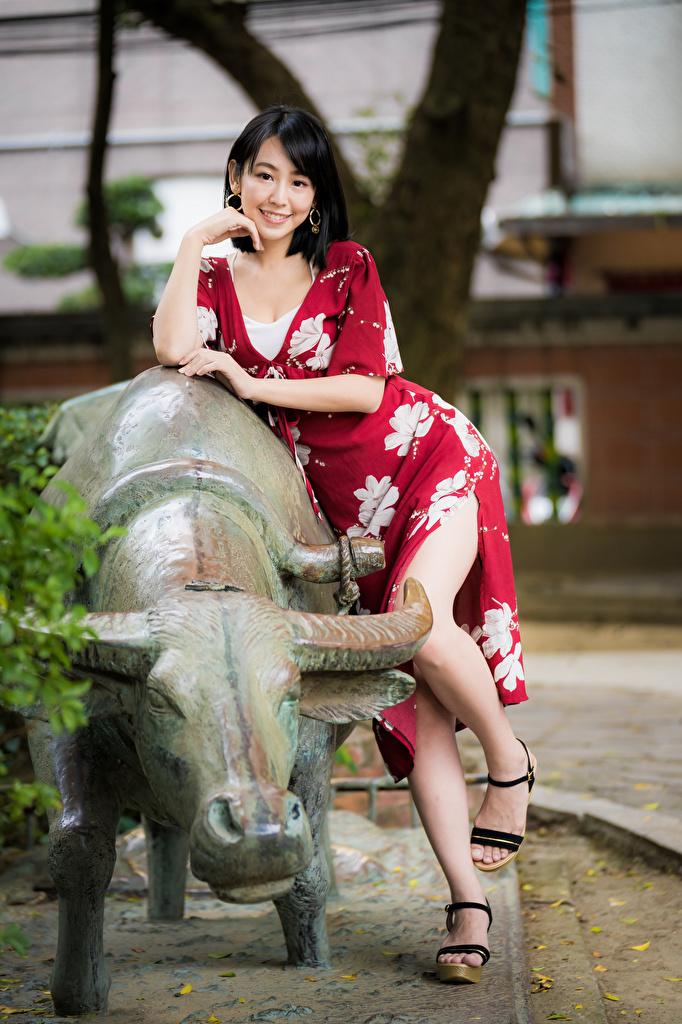 Картинка брюнетки Улыбка позирует молодая женщина ног азиатки Взгляд платья  для мобильного телефона брюнеток Брюнетка улыбается Поза девушка Девушки молодые женщины Ноги Азиаты азиатка смотрят смотрит Платье