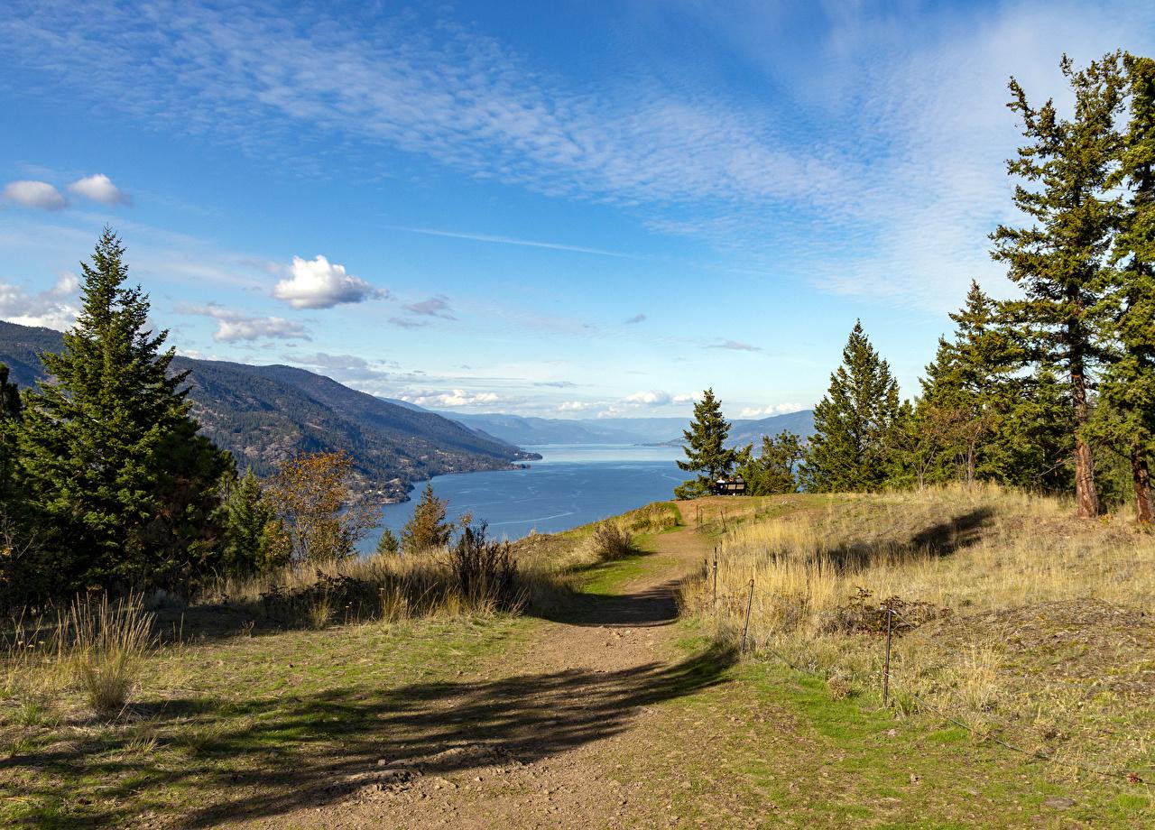 Обои для рабочего стола Канада Kelowna British Columbia ели осенние Природа речка Побережье Ель Осень Реки река берег