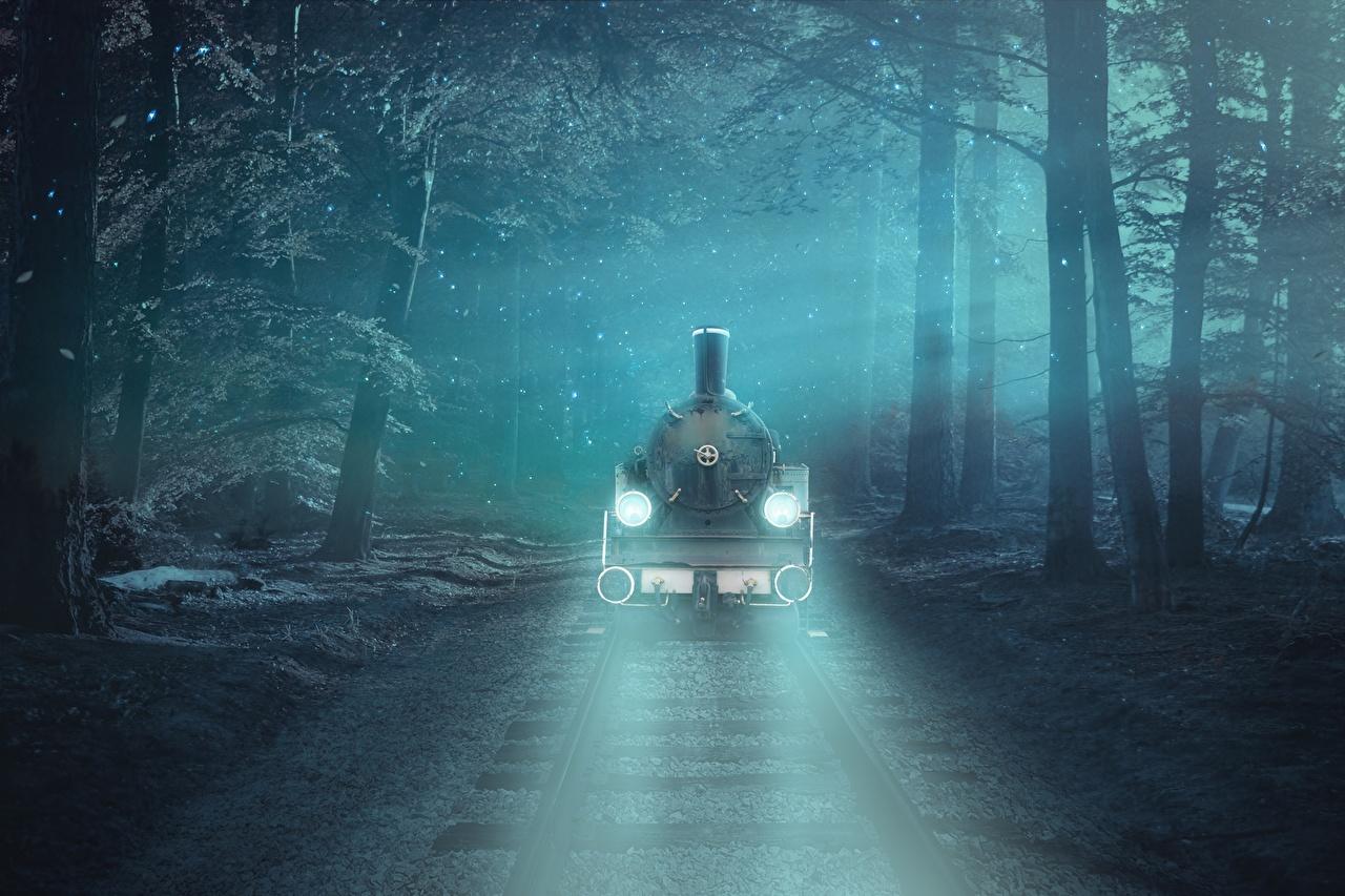 Картинки Рельсы тумана Фэнтези Леса Поезда Железные дороги дерева рельсах Туман тумане Фантастика лес дерево Деревья деревьев