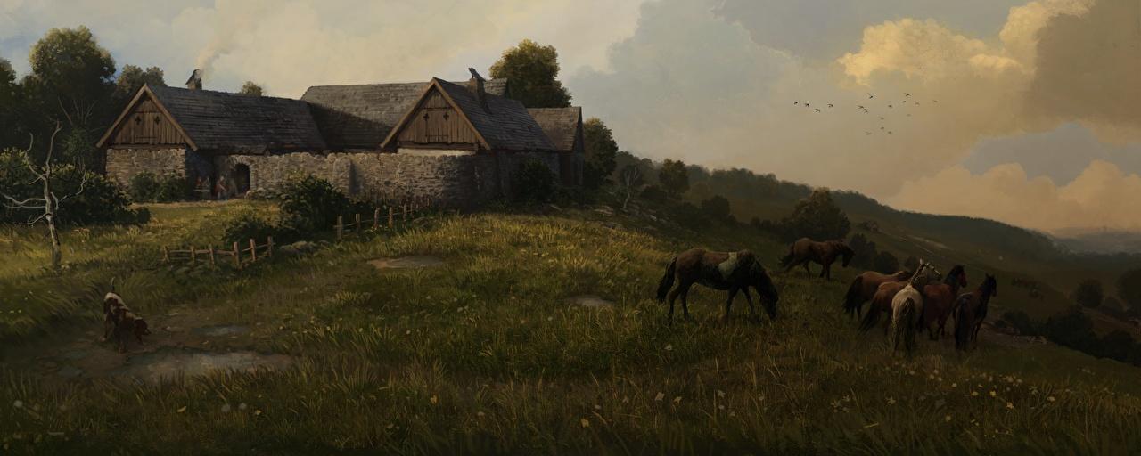 Фото Kingdom Come: Deliverance Лошади Neuhof Игры Луга Трава