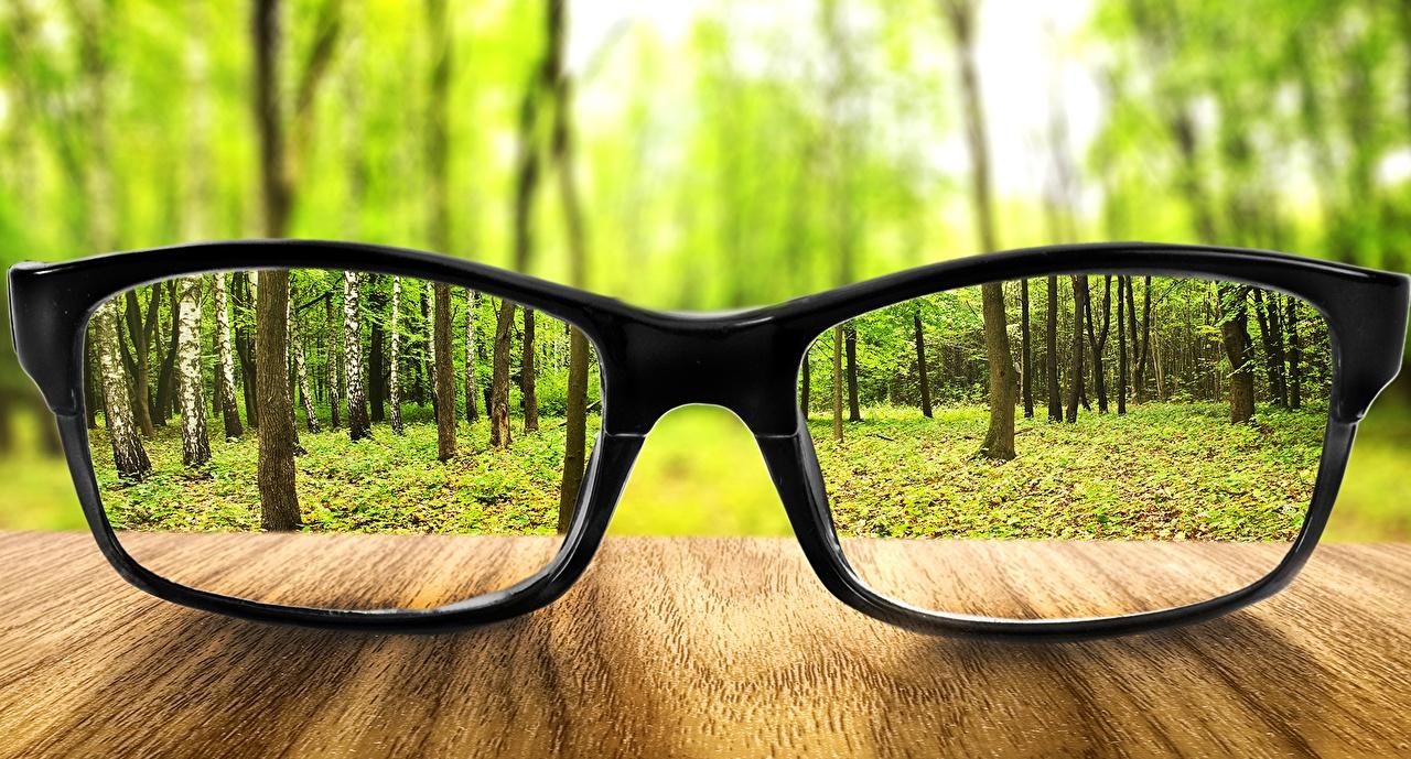Обои для рабочего стола лес Очки вблизи Леса очков очках Крупным планом