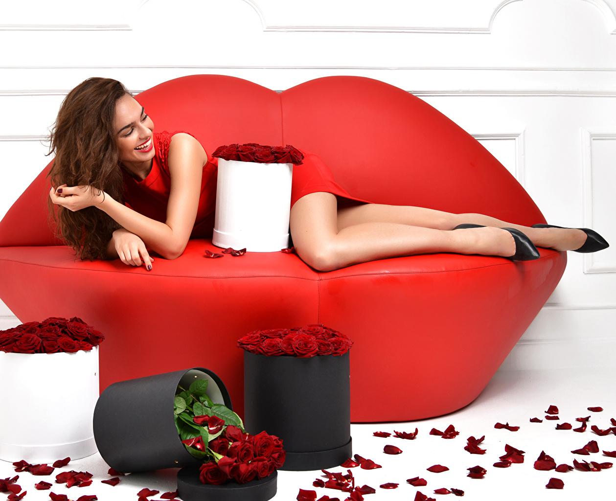 Картинка Шатенка улыбается Розы красных лепестков молодые женщины Диван шатенки Улыбка роза девушка Девушки Красный красные красная Лепестки молодая женщина диване