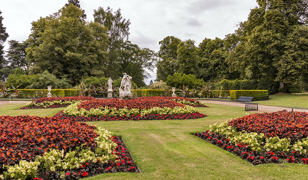 Фото Великобритания Waddesdon Manor Gardens Природа Сады Газон кустов Скульптуры Дизайн газоне Кусты скульптура дизайна