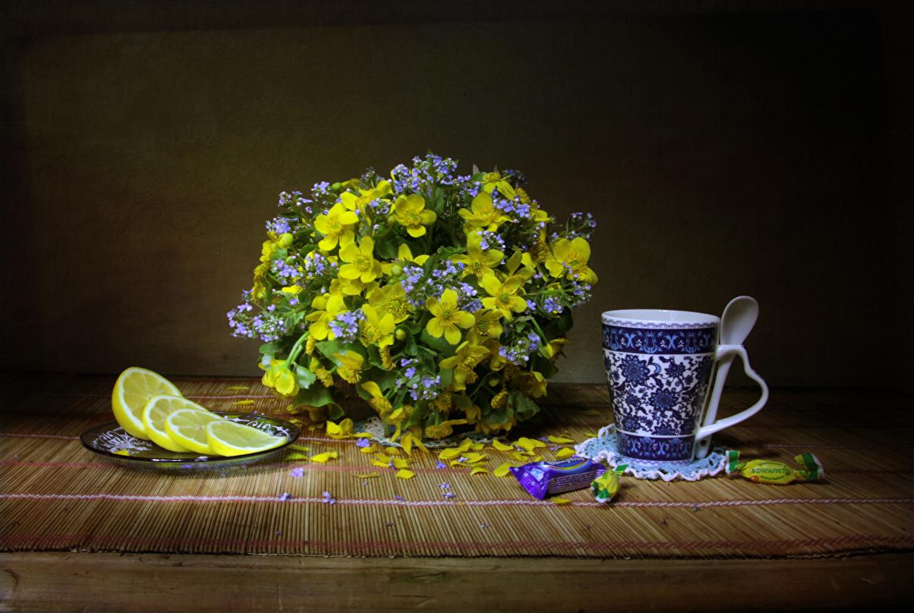 Картинка Букеты Конфеты Цветы Лимоны Морозник Чашка Натюрморт букет цветок чашке