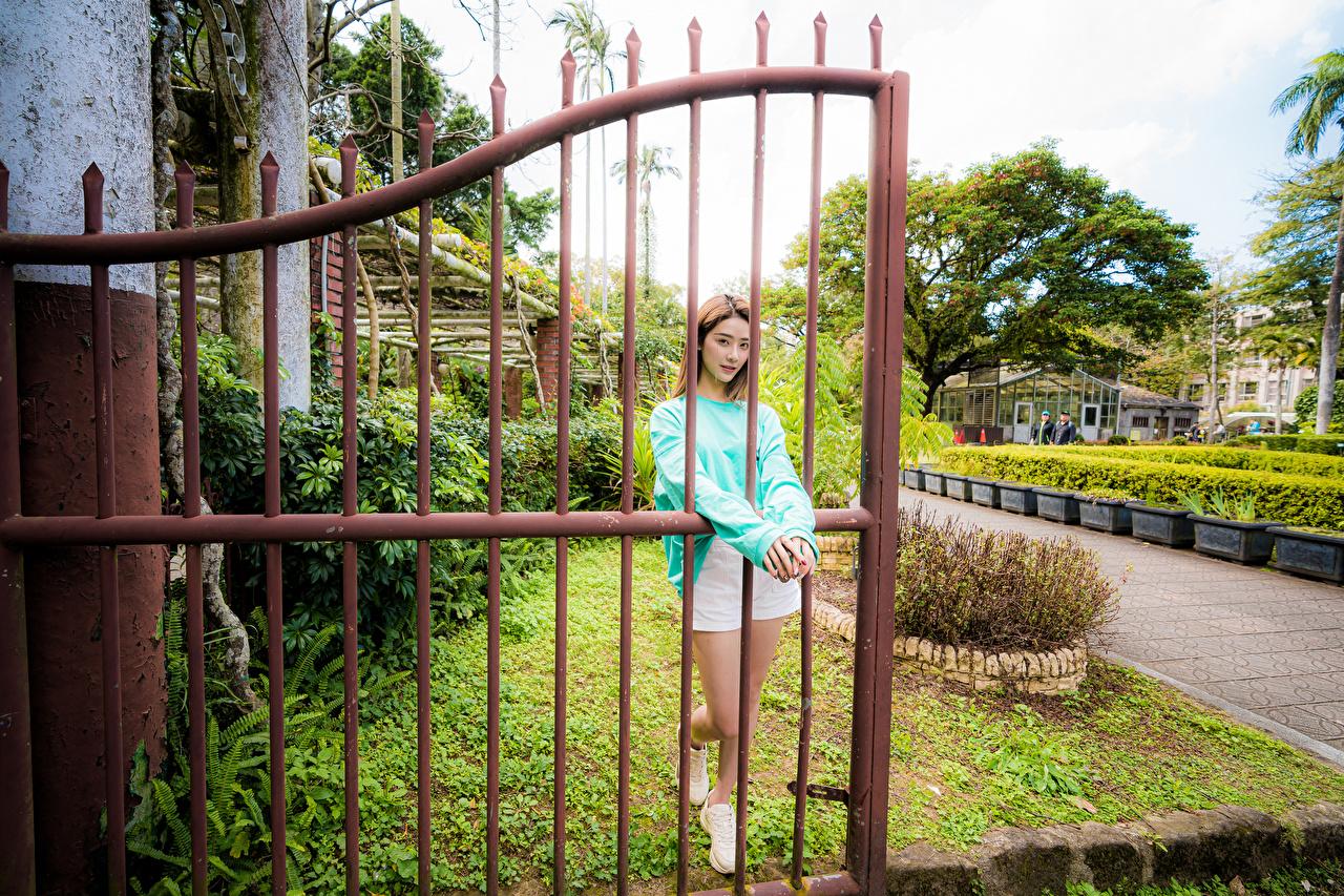 Фото позирует молодые женщины Азиаты забора Поза девушка Девушки молодая женщина Забор ограда азиатки азиатка забором