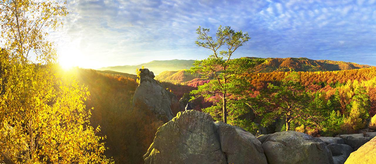 Фотография Закарпатье Украина гора осенние Природа лес Деревья Горы Осень Леса дерево дерева деревьев