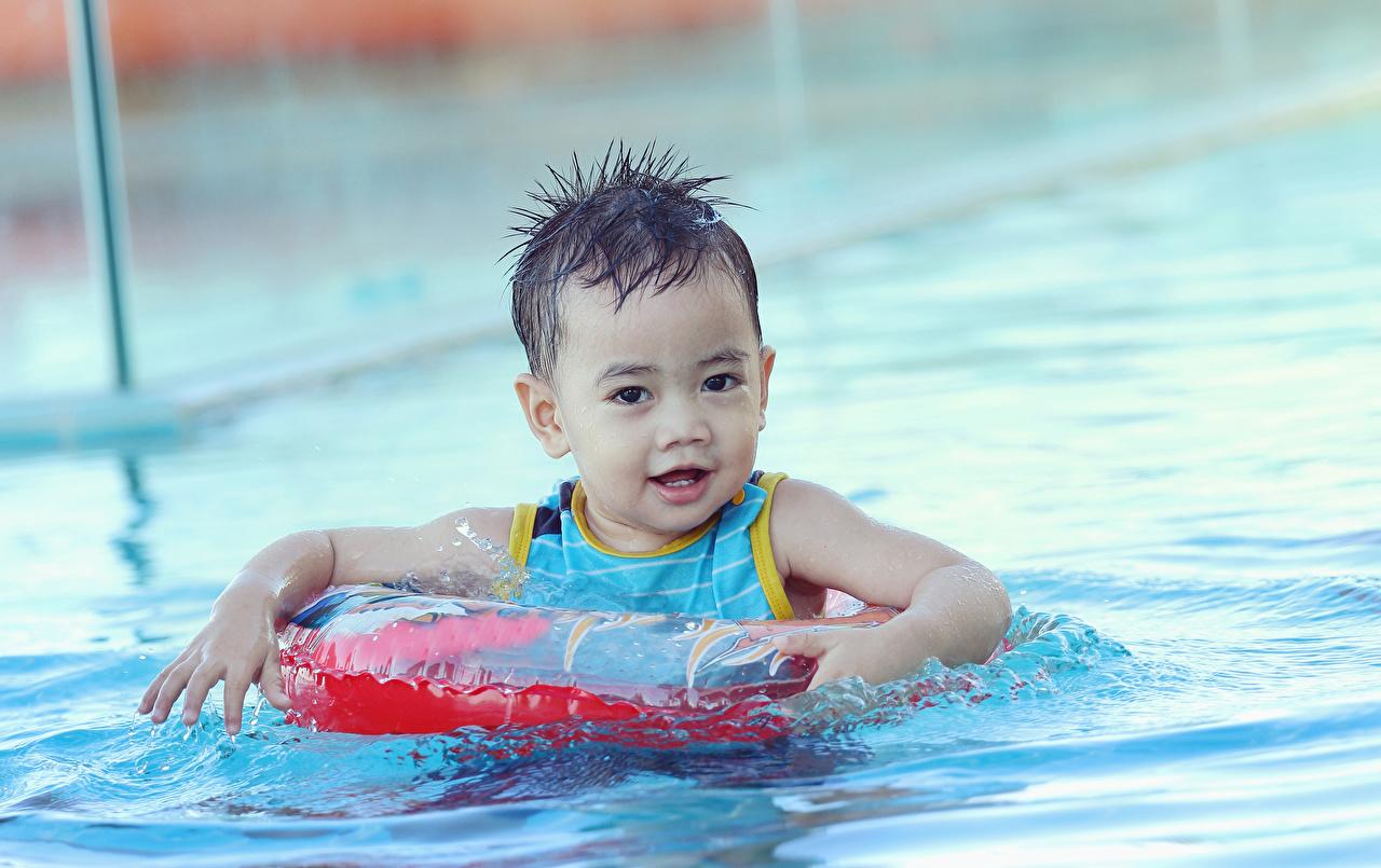 Картинки мальчик плывут Бассейны ребёнок Вода смотрят Мальчики мальчишка мальчишки Плывет плавает плавают плывущий плавающий Плавательный бассейн Дети воде Взгляд смотрит