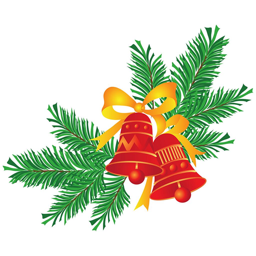 Фотография Новый год ветка Бантик Колокольчики Рождество бант ветвь Ветки бантики на ветке колокольчик
