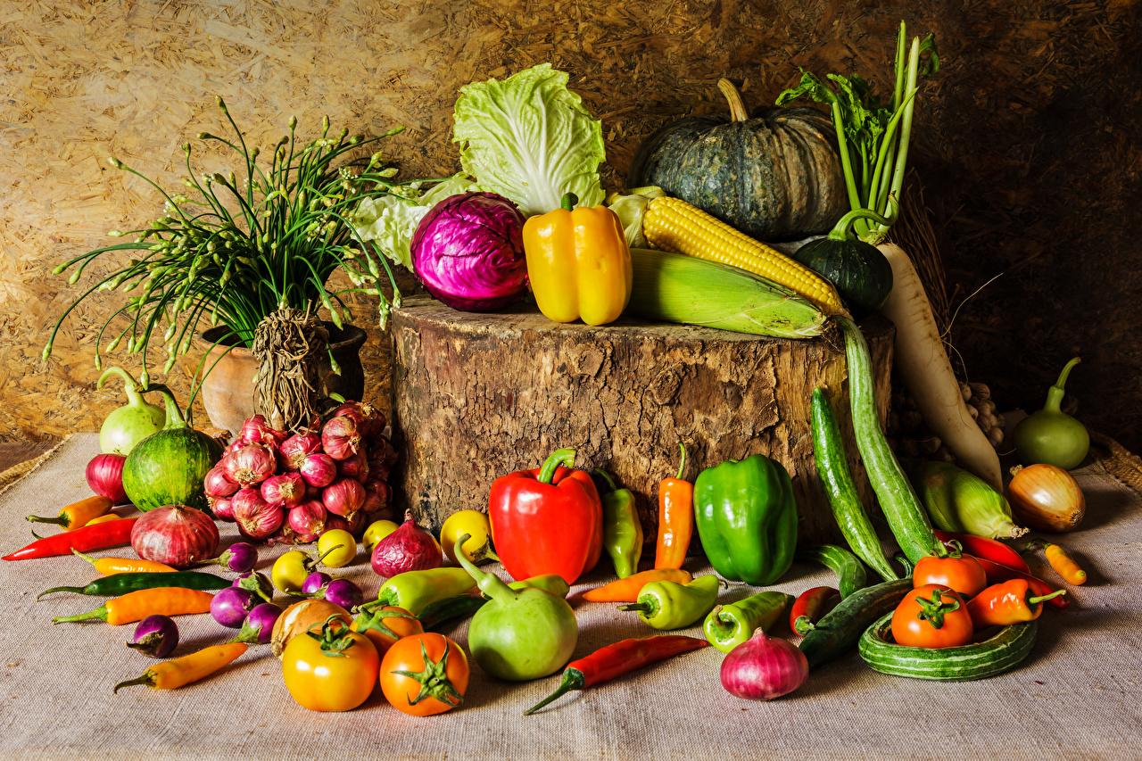 Картинки Тыква Капуста Помидоры Кукуруза Лук репчатый пне Пища Перец Овощи Томаты Пень Еда перец овощной Продукты питания