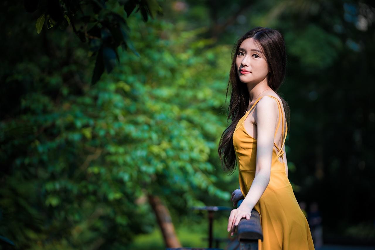 Картинки брюнетки боке девушка Азиаты смотрят Платье брюнеток Брюнетка Размытый фон Девушки молодые женщины молодая женщина азиатки Взгляд смотрит платья