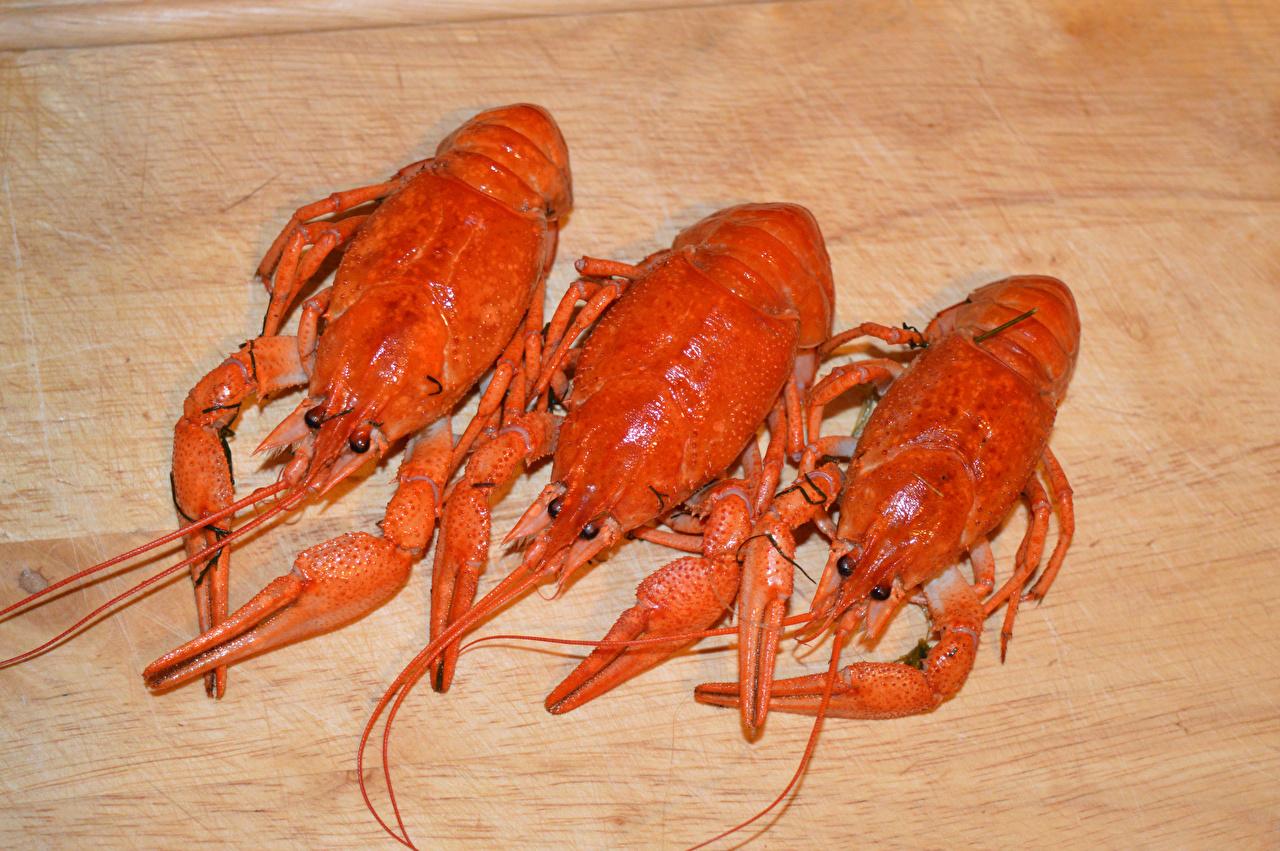 Фото Раки Пища Трое 3 Морепродукты Еда три втроем Продукты питания