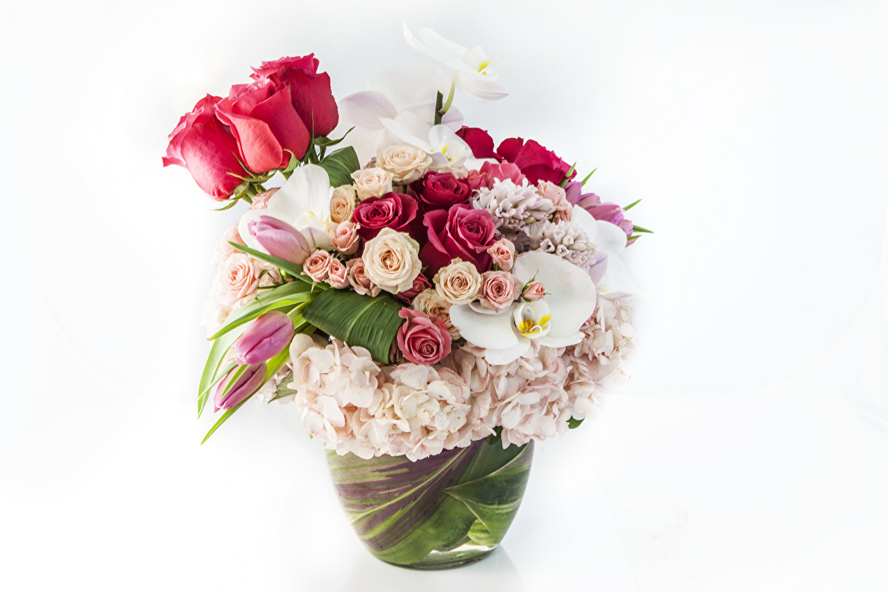 Фото Букеты Розы Орхидеи Цветы Гортензия Белый фон