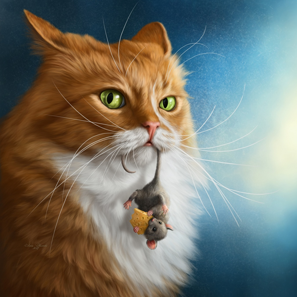 Фотографии Мыши коты Сыры смотрит животное кот кошка Кошки Взгляд смотрят Животные