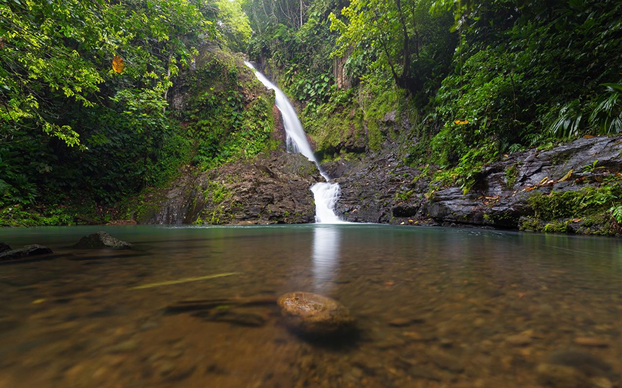 Обои Guadeloupe Basse-Terre Природа Водопады Тропики Камни Камень