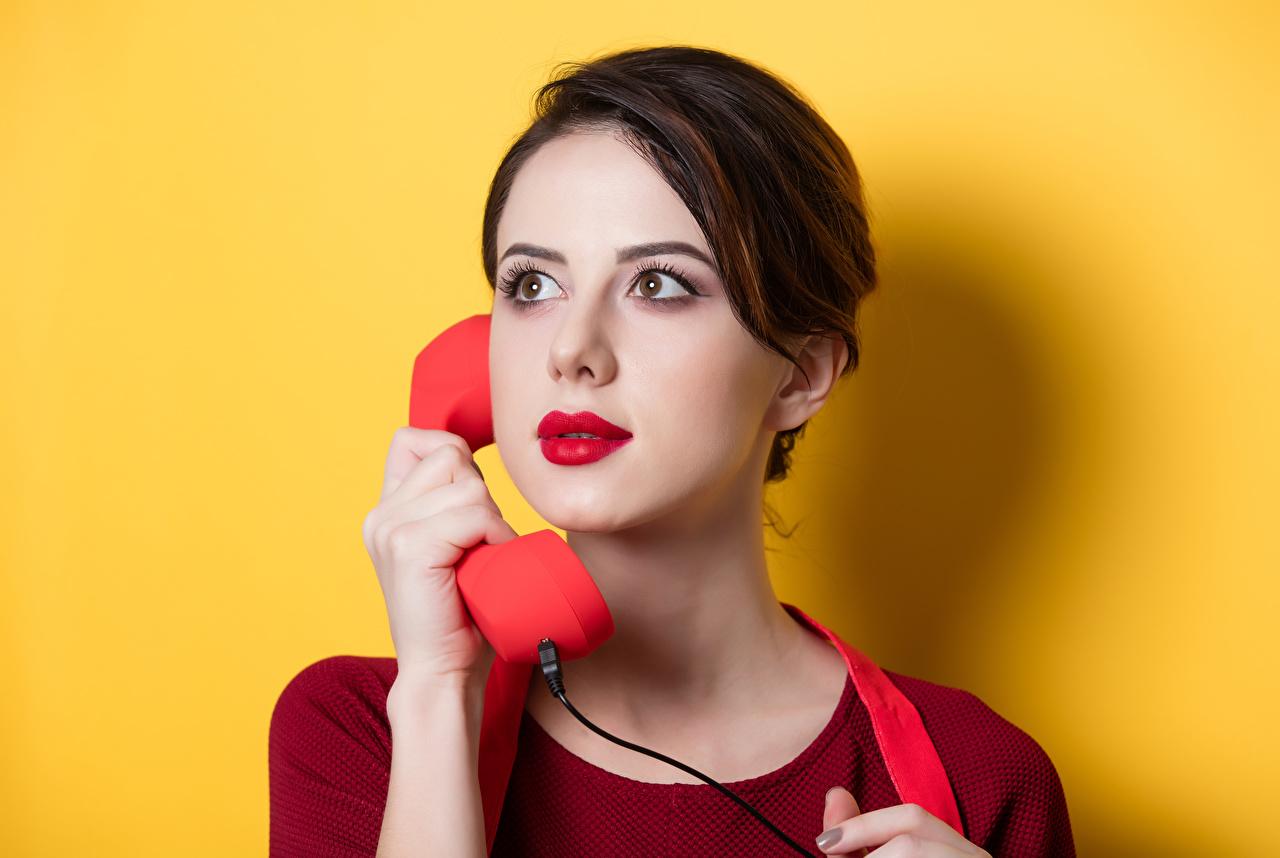 Фотография Шатенка Девушки телефона Взгляд Цветной фон шатенки Телефон девушка телефоном молодые женщины молодая женщина смотрят смотрит