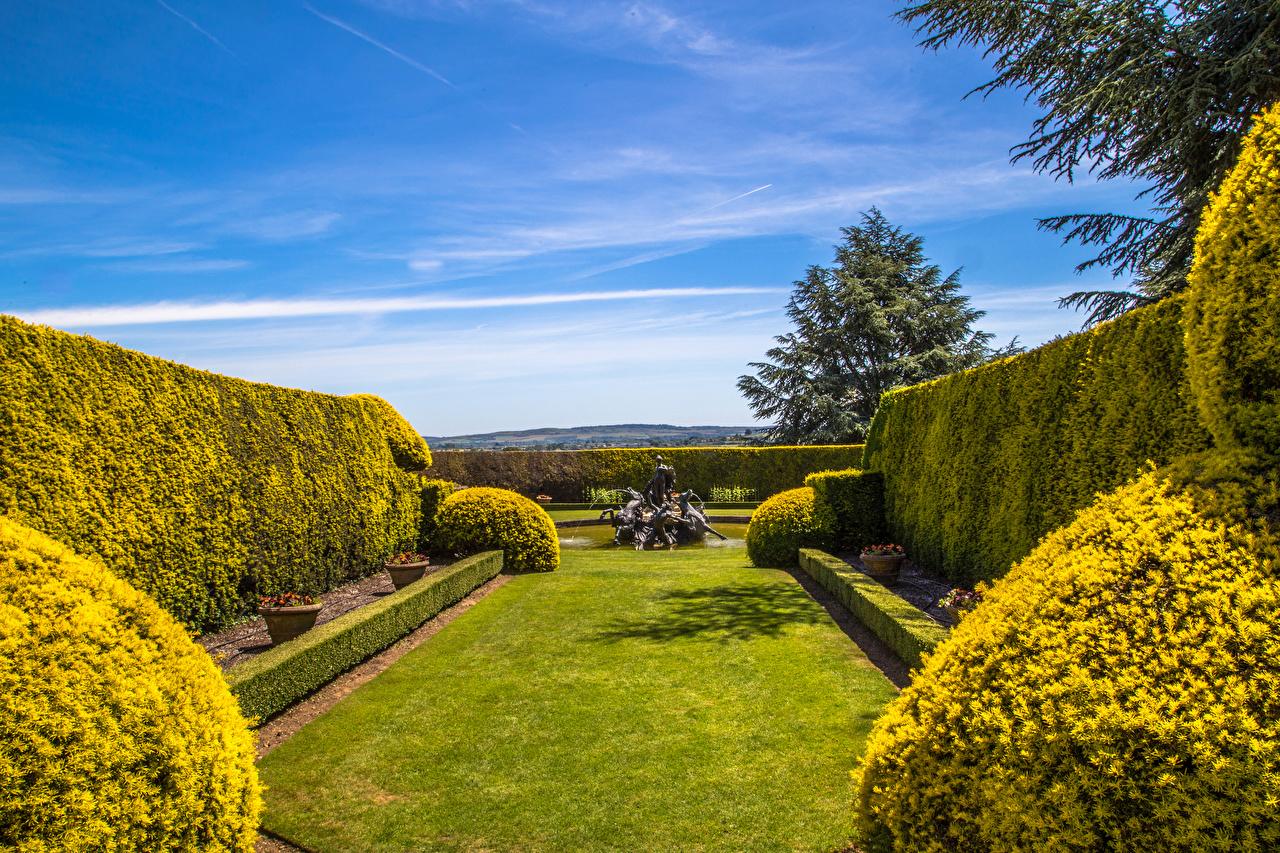 Картинка Англия Фонтаны Ascott House Gardens Buckinghamshire Природа Сады Газон кустов дизайна газоне Кусты Дизайн