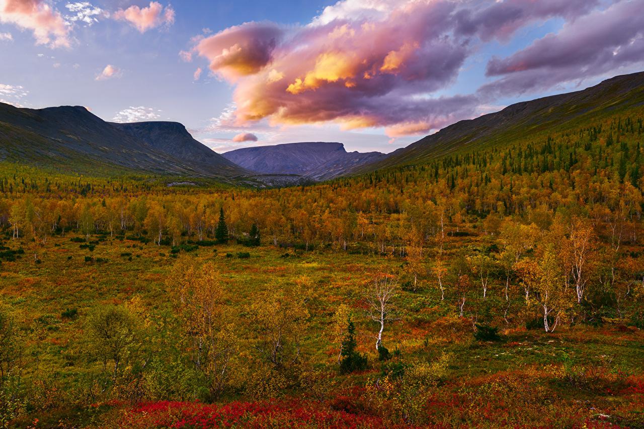 Картинки Россия Khibiny гора Осень Природа дерева облачно Горы осенние дерево облако Облака Деревья деревьев