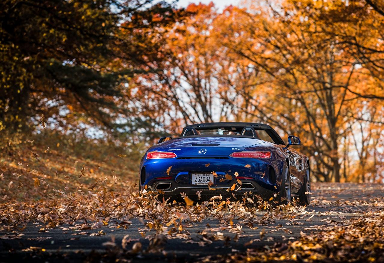 Фото Mercedes-Benz Листья AMG 2018 GT C Родстер синяя вид сзади Автомобили Мерседес бенц лист Листва синих синие Синий авто Сзади машина машины автомобиль