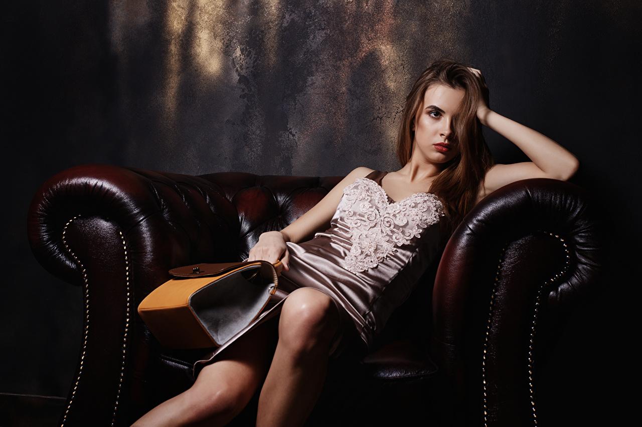 Обои для рабочего стола Viacheslav Krivonos Alice Девушки Сумка Сидит Кресло смотрят Платье девушка молодая женщина молодые женщины сидя сидящие Взгляд смотрит платья