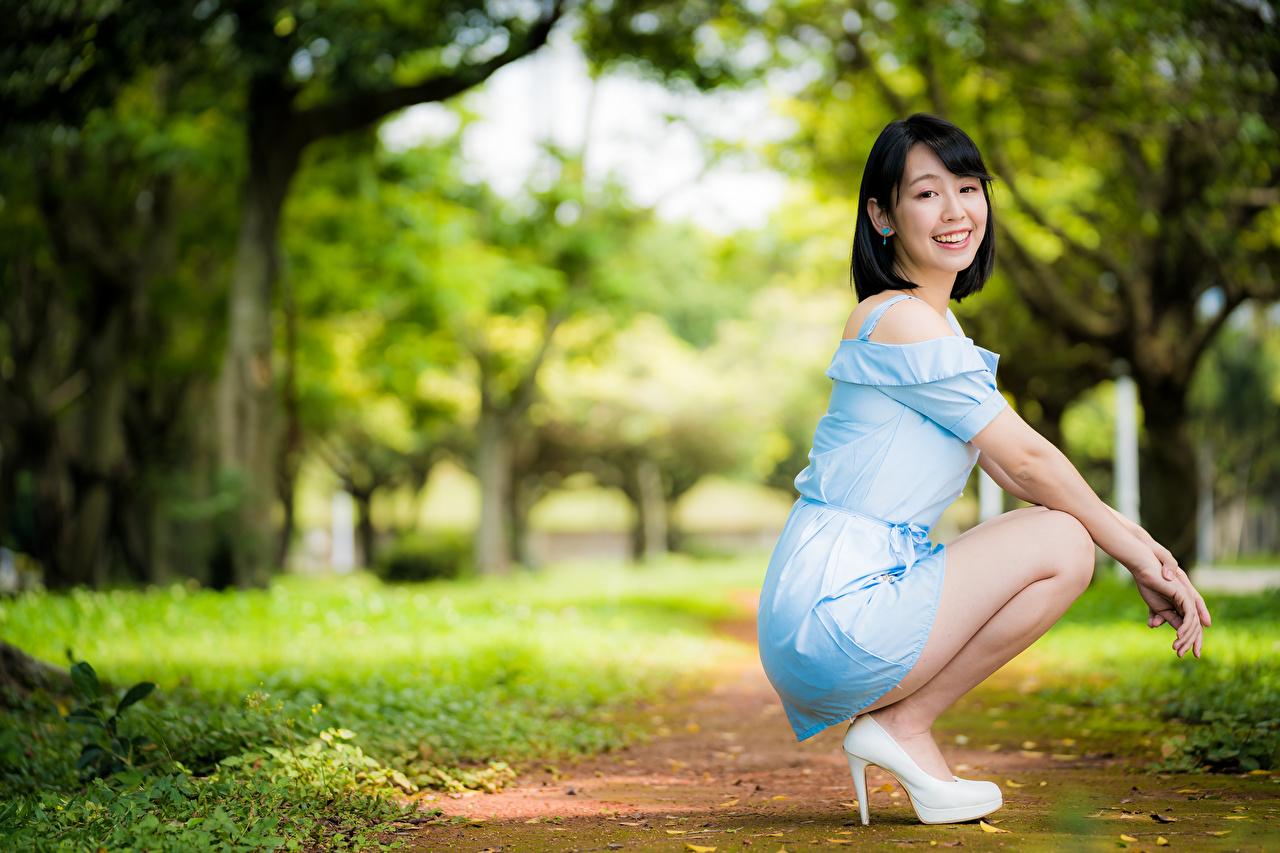 Фото Шатенка Улыбка Размытый фон Поза молодые женщины Азиаты сидя Платье шатенки улыбается боке позирует девушка Девушки молодая женщина азиатка азиатки Сидит сидящие платья