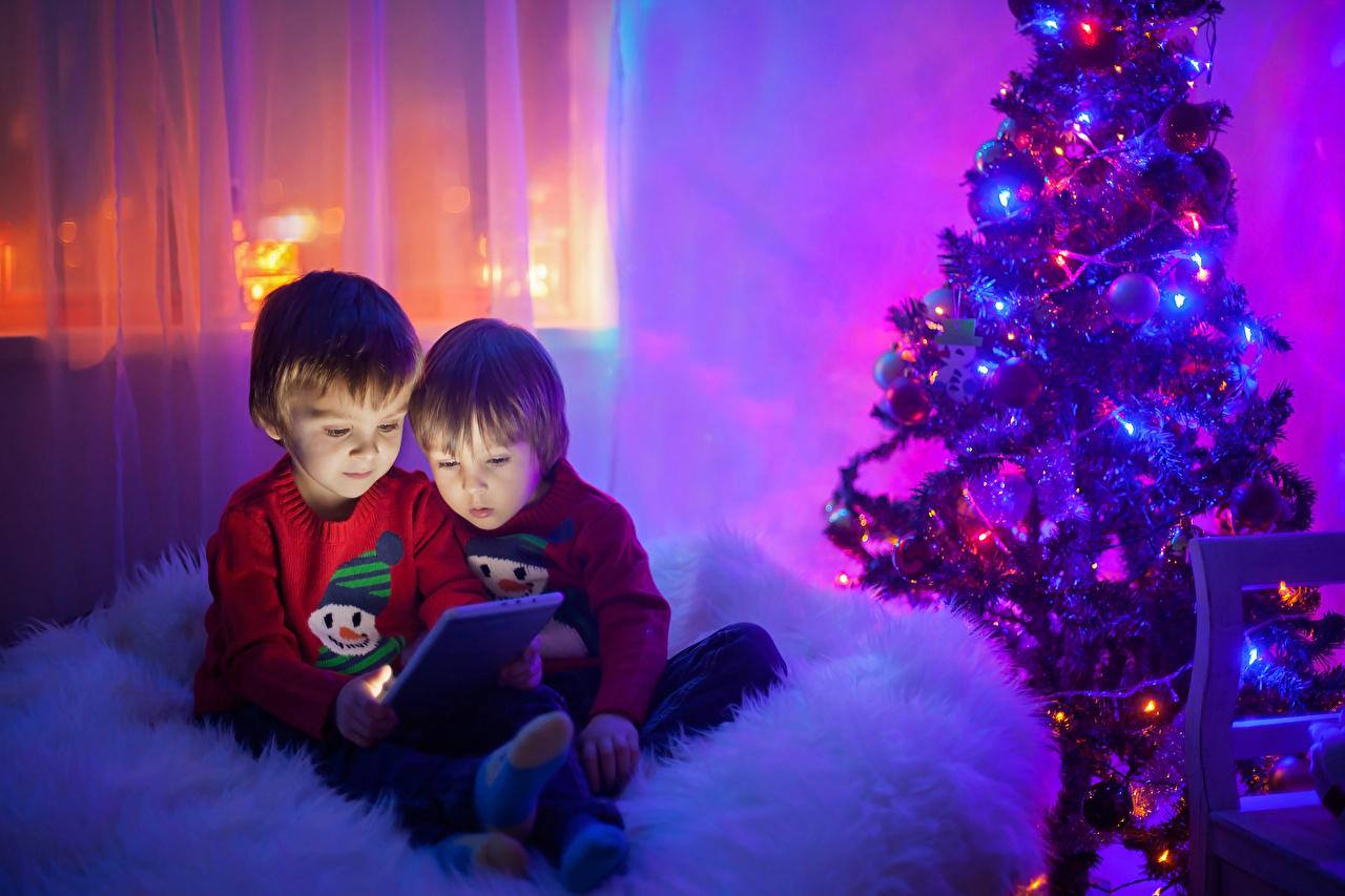 Фото Планшетный компьютер Мальчики Рождество ребёнок 2 Новогодняя ёлка Планшет мальчик мальчишки мальчишка Новый год Дети две два Двое Елка вдвоем