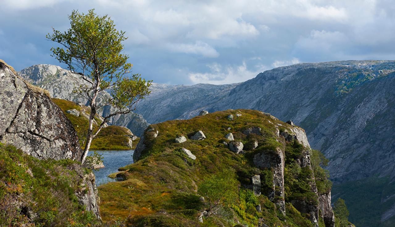 Картинки Норвегия Rogaland Горы Утес Природа Камни гора Скала скале скалы Камень