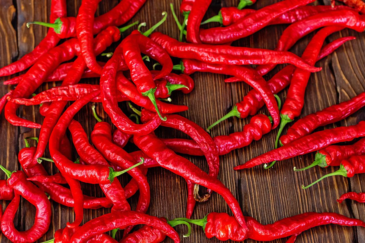 Фотографии Красный Острый перец чили Пища Много красная красные красных Еда Продукты питания