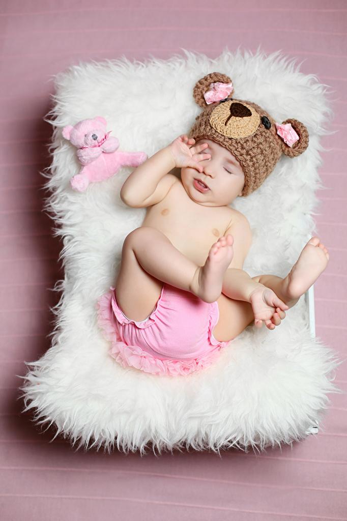 Обои Младенцы Ребёнок шапка Плюшевый мишка Цветной фон младенца младенец грудной ребёнок Дети Шапки в шапке Мишки