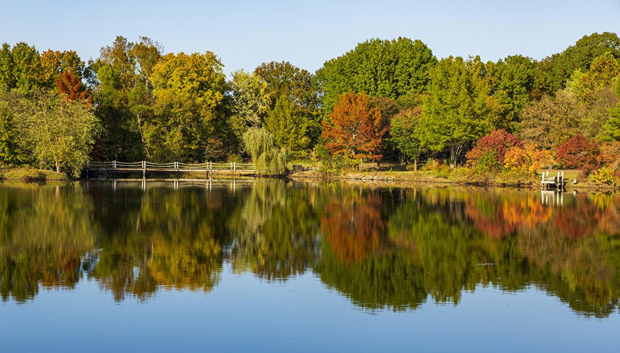 Фотографии США Ozarks Missouri Осень Мосты Природа речка дерево штаты америка мост осенние Реки река дерева Деревья деревьев