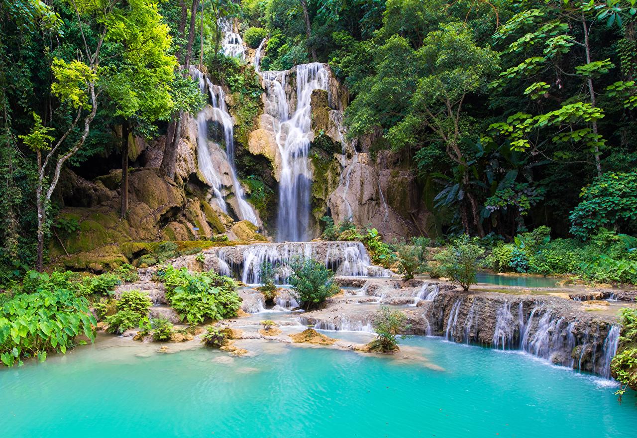 Фотография Kouangxi Water Fall Laos скалы Природа Водопады дерево Утес Скала скале дерева Деревья деревьев