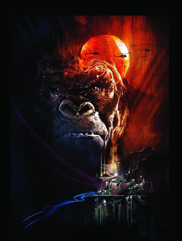 Фотография Конг: Остров черепа Обезьяны Фильмы Морда  для мобильного телефона обезьяна кино морды