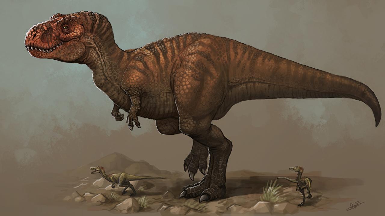 Фото Тираннозавр рекс Динозавры животное Древние животные динозавр Животные