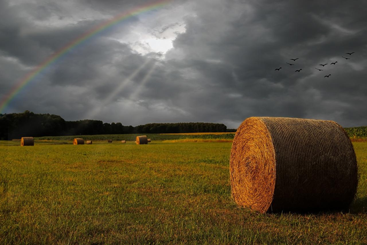 Обои для рабочего стола Лучи света туч Радуга Природа Поля Сено Тучи радуги сене