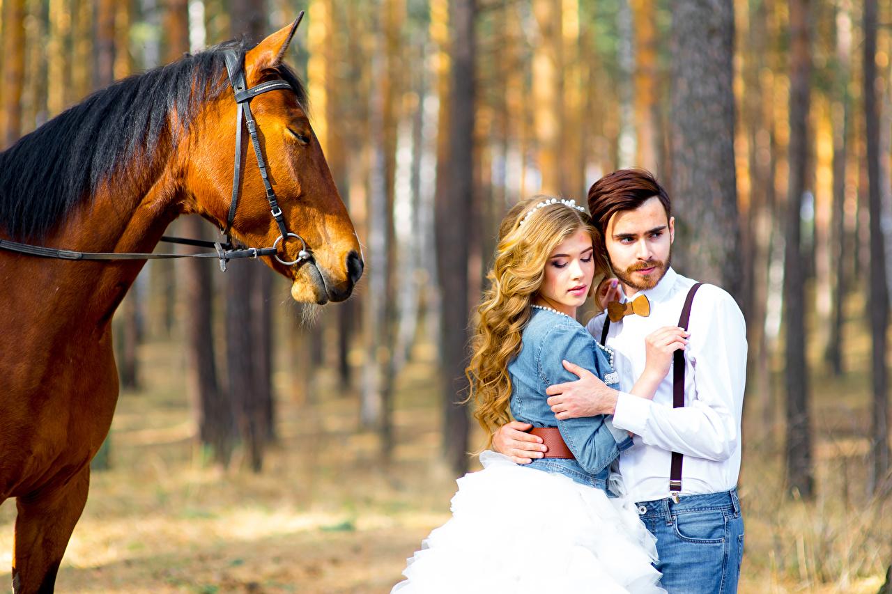 Фотографии Жених Лошади Свадьба Невеста Блондинка Влюбленные пары Двое Любовь Девушки любовники 2 вдвоем