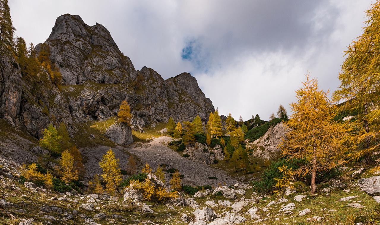 Обои для рабочего стола альп Словения Julian Alps Утес Осень Природа дерево Альпы скале Скала скалы осенние дерева Деревья деревьев
