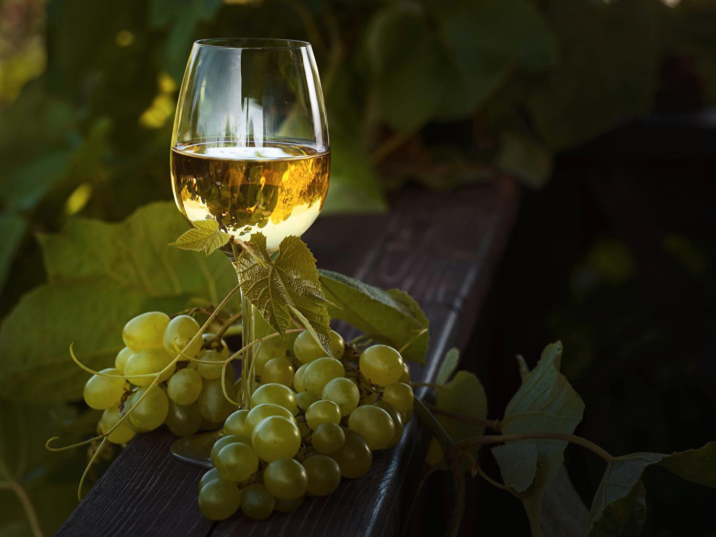 Фото Вино Виноград Пища Бокалы Еда Продукты питания